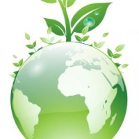 picture-of-green-globe-with-plants-growing-out (1)